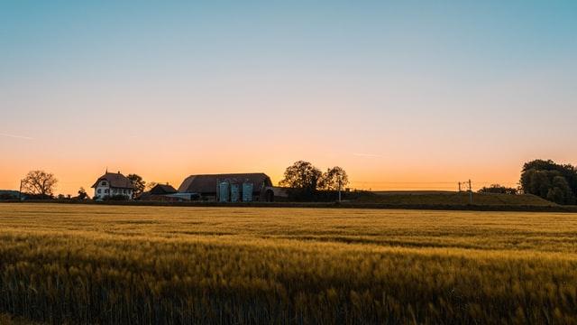 Brasil: servicios de smart agro para exportar al mundo