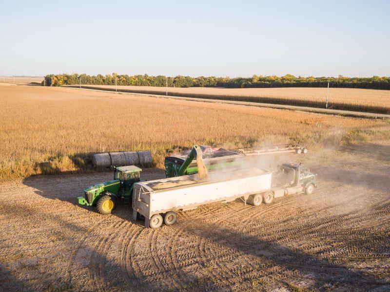 Sector agroalimentar Portugues