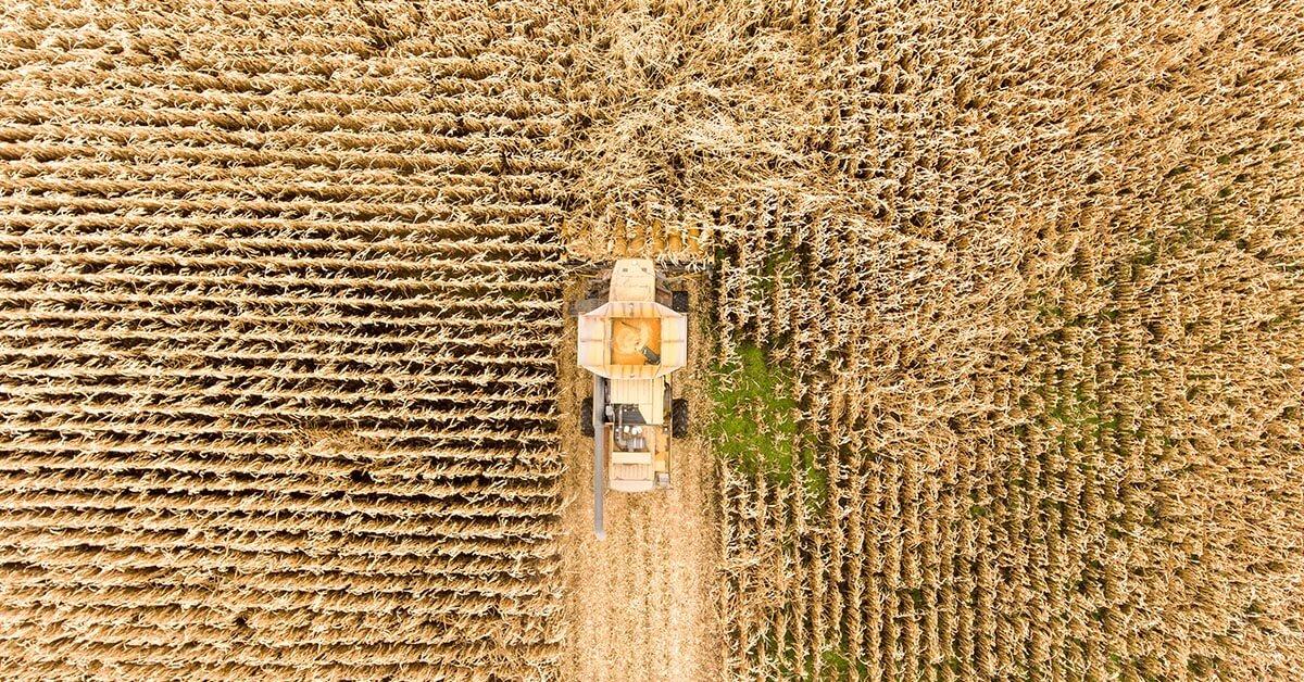 oportunidades para el sector agroaliemtario peru
