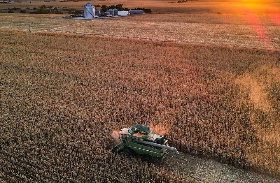 sector agroalimentario en portugal